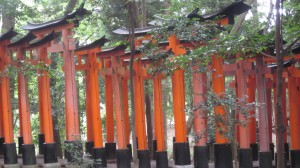 Portit muodostavat vehreän kujan