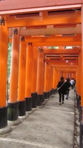 Inari pyhätön Torii-porttien rivistö